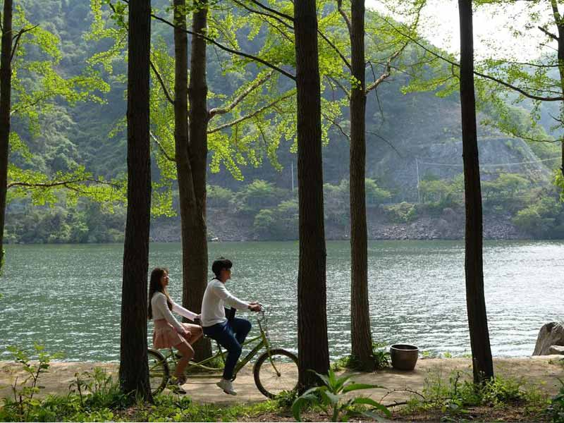 Indahnya Pulau Nami Di Korea